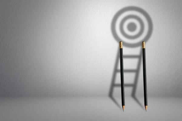 elaborare un piano d'azione per conseguire un obiettivo professionale